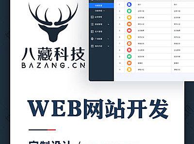 WEB网站开发-定制设计-1V1专业客服